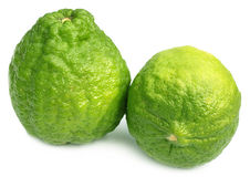 Bangladeshi lemon named as Ada Lebu Stock Images