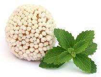 Bangladeshi Sweets with green stevia Stock Image
