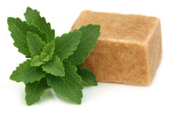 Bangladeshi sweets named as Sandesh with stevia Royalty Free Stock Image
