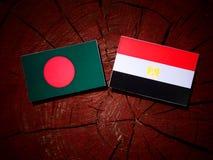 Bangladesz flaga z egipcjanin flaga na drzewnym fiszorku Fotografia Stock