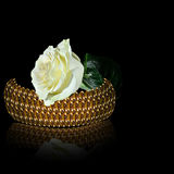 Bangle и белая роза золота на черной предпосылке Стоковые Фотографии RF