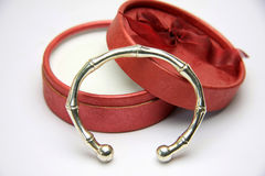 bangle Obraz Stock