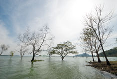 Bangpra Reservior,Thailand Royalty Free Stock Photography