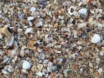 Bangsaen strand Fotografering för Bildbyråer