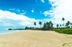 Bangsak beach in blue sky and palm trees at khao lak Phangnga Royalty Free Stock Images