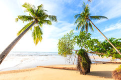 Bangsak beach in blue sky and palm trees. At Phangnga, Thailand Royalty Free Stock Images