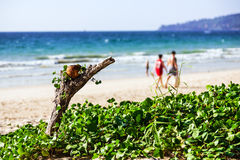 Bangtao-Strand, Phuket, Thailand Lizenzfreie Stockfotos