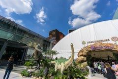 Banguecoque, Tailândia - 29 de novembro de 2015: Os dinossauros asiáticos da exposição exterior na frente de Siam Paragon (shoppi Imagem de Stock Royalty Free