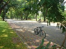 BANGUECOQUE TAILÂNDIA - em abril de 2015: A bicicleta e o motociclista no Lumpini estacionam o 11 de abril de 2015 em BANGUECOQUE Fotografia de Stock
