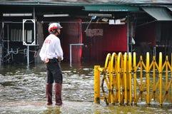 BANGUECOQUE, TAILÂNDIA - NOVEMBRO 05 Fotos de Stock Royalty Free
