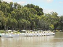 Banguecoque-Tailândia: Parque de Chatuchak Fotos de Stock Royalty Free