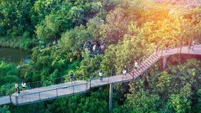 BANGUECOQUE, TAILÂNDIA - 14 de outubro de 2017: Forest Learning Center, a seção da caminhada do céu no verde do PTT no centro do  fotos de stock royalty free