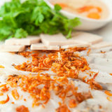Banh cuon. Vietnamese steamed rice paper with pork, beef and chicken insied with fresh fried onions tofu,  and meat ham -  patev, egetables and coriander Royalty Free Stock Image