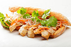 Banh mi με το χοιρινό κρέας Στοκ φωτογραφίες με δικαίωμα ελεύθερης χρήσης