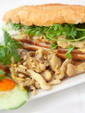 Banh mi chicken Stock Photography