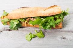 Banh Mi, Vietnamese sandwich Stock Photos