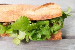 Banh Mi, Vietnamese sandwich Royalty Free Stock Image