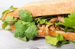 Banh Mi, Vietnamese sandwich Stock Image