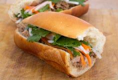 Banh mi vietnamesisk grisköttsmörgås Royaltyfri Bild