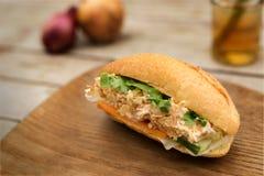 Banh Mi, wietnamczyka chleb Obraz Stock