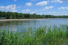 Banhando o lago Fotos de Stock