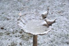 Banheira de passarinho congelada sobre e coberta em uma camada de neve Imagens de Stock Royalty Free