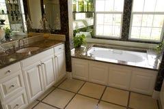 Banheiro 2459 Imagens de Stock