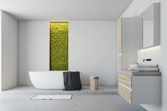 Banheiro branco, parede verde ilustração do vetor