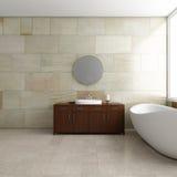 Banheiro com tubo Fotografia de Stock Royalty Free