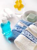 Banheiro da manhã Foto de Stock