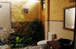 Banheiro do desenhador Imagens de Stock