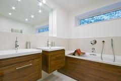 Banheiro do tamanho de família Foto de Stock Royalty Free