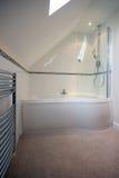 Banheiro luxuoso fotografia de stock royalty free