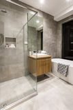 Banheiro luxuoso com cuba e chuveiro de água fotografia de stock royalty free