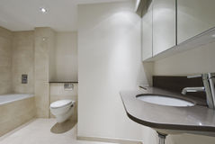 Banheiro na moda Imagem de Stock