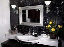Banheiro preto e branco Imagens de Stock