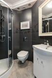 Banheiro preto e branco Fotografia de Stock Royalty Free