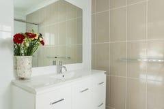 Banheiro telhado novo do ensuite imagem de stock royalty free