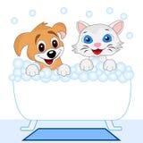 Banho alegre do gatinho e do cão no banho Fotos de Stock Royalty Free