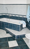 Banho azul Fotografia de Stock