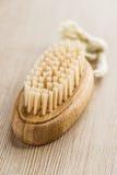 Banho da escova Fotografia de Stock Royalty Free