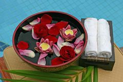 Banho da flor Imagem de Stock