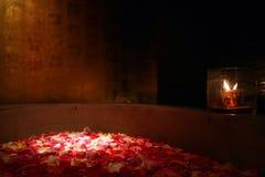Banho das pétalas de Rosa Imagem de Stock