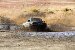 Banho de lama Imagem de Stock