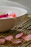 Banho de Rosa Imagem de Stock
