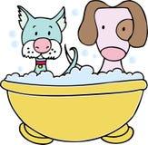 Banho do cão e do gato Fotografia de Stock Royalty Free