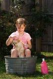 Banho do filhote de cachorro imagem de stock