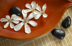 Banho floral Imagem de Stock