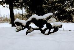 Banho nevado do pássaro Foto de Stock