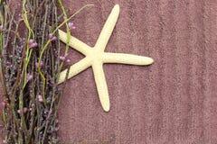 Banho - textura de toalha, flores da mola Imagens de Stock